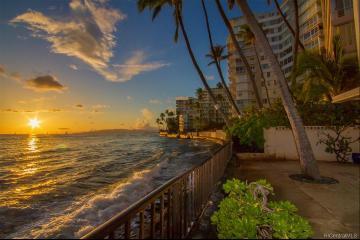 2987 Kalakaua Avenue, 104, Honolulu, HI 96815