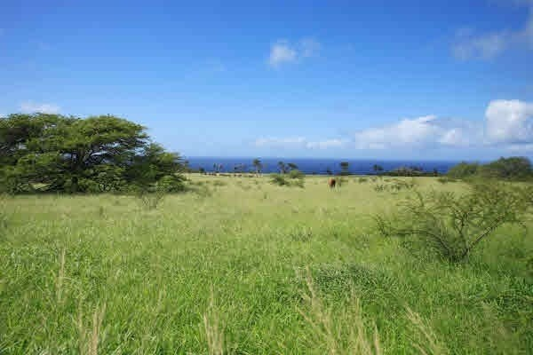 0 Puakea Bay Ranch, Hawi, HI 96719