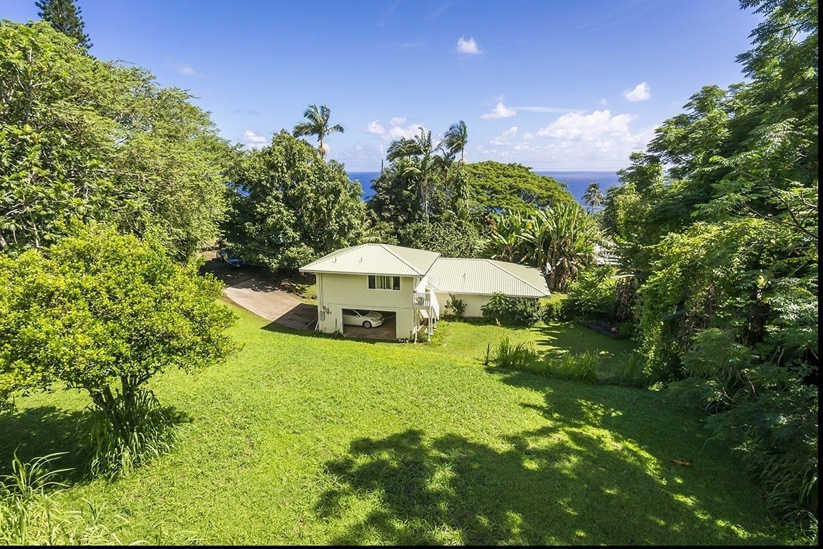 362289 Hawaii Belt Rd, Laupahoehoe, HI 96764