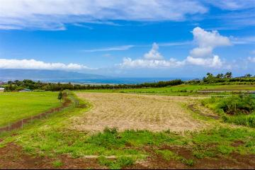 2350 Baldwin Ave, Unit A, Makawao, HI 96768